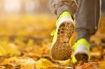 Не упустите шанс на чудные осенние прогулки! Спорт - 50%